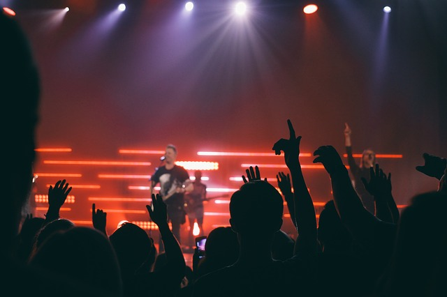 zpěvák na koncertě